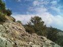 Dieses Motiv findet sich seit dem 27. August 2005 in der Kategorie Puig de Teix (Mallorca).
