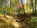 Bach im Herbst