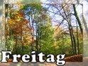 Freitag    Dieses Kartenmotiv ist seit dem 28. Oktober 2005 in der Kategorie Freitag.