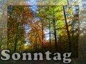 Sonntag    Dieses Kartenmotiv wurde am 28. Oktober 2005 neu in die Kategorie Sonntag aufgenommen.