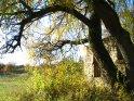 Dieses Motiv finden Sie seit dem 28. Oktober 2005 in der Kategorie Herbstlandschaften.