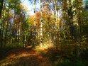 Dieses Motiv wurde am 28. Oktober 2005 in die Kategorie Herbstlandschaften eingefügt.