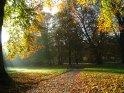 Dieses Kartenmotiv wurde am 30. Oktober 2005 neu in die Kategorie Herbstlandschaften aufgenommen.