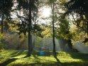 Die durch die Blätter tretenden Sonnenstrahlen lenken den Blick direkt auf die Sonne mit einer darunter stehenden Bank    Dieses Motiv finden Sie seit dem 30. Oktober 2005 in der Kategorie Herbstlandschaften.
