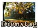 Dienstag    Dieses Motiv findet sich seit dem 30. Oktober 2005 in der Kategorie Dienstagskarten.
