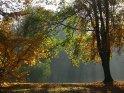 Dieses Motiv findet sich seit dem 30. Oktober 2005 in der Kategorie Herbstlandschaften.