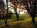 Licht und Schatte in einer Herbstlandschaft    Dieses Motiv befindet sich seit dem 30. Oktober 2005 in der Kategorie Herbstlandschaften.
