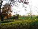 blick über eine Herbstwiese    Dieses Kartenmotiv ist seit dem 30. Oktober 2005 in der Kategorie Herbstlandschaften.