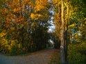Dieses Motiv wurde am 30. Oktober 2005 in die Kategorie Herbstlandschaften eingefügt.