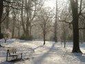 Eine dünne Schneedecke überzieht diesen Weg zwischen vereinzelten Bäumen