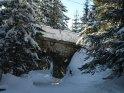 Brücke in mitten von verschneiten Tannen