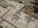 ... Die Mosaike am Boden der Häuser sind jedoch in Ostia Antica meist in einem besseren Zustand und auch häufiger. ...