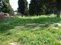 ... diese von Gras bedeckte Straße führt vorbei ...