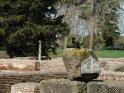 ... geht es weiter zur Cisiarii Therme, der Therme der Fuhrleute, mit einem der heutigen Bewohner von Ostia Antica. ...