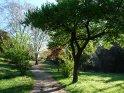 Aus der Kategorie Villa Borghese (Rom, Italien)