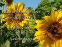 Geburtstagskarte mit Spruch: Man wird nicht älter, sondern besser!  Alles Gute zum Geburtstag    Das Motiv bilden zwei Sonnenblumen in mitten eines Sonnenblumenfelds