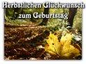 Herbstlichen Glückwunsch zum Geburtstag    Aus der Kategorie Allgemeine Geburtstagskarten
