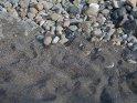 Hier sieht man sehr schön den schwarzen Sand des Strandes