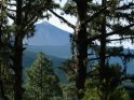 Blick durch die Bäume über baumbewachsene Hügel auf den Teide