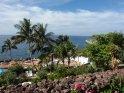Aus der Kategorie Playa de las Americas (Teneriffa)