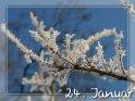 24. Januar    Dieses Motiv finden Sie seit dem 29. Dezember 2007 in der Kategorie Tageskarten Januar.