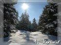 01. Januar    Dieses Motiv finden Sie seit dem 29. Dezember 2007 in der Kategorie Tageskarten Januar.