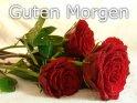 Guten Morgen-karte mit einem Strauß rote Rosen