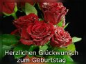 Herzlichen Glückwunsch zum Geburtstag  Ein Blumenstrauß mit roten Rosen, deren Blütenblätter mit  Wassertropfen bedeckt sind.