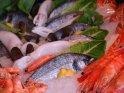 Fische in der Auslage eines Restaurants am Hafen