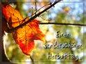 Einen wunderschönen Herbsttag    Dieses Motiv wurde am 15. Oktober 2007 in die Kategorie Schönen / Guten Tag eingefügt.