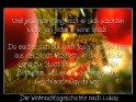 Und jedermann ging, daß er sich schätzen  ließe, ein jeder in seine Stadt.    Da machte sich auf auch Josef aus Galiläa,  aus der Stadt Nazareth, in das jüdische  Land zur Stadt Davids, die da heißt  Bethlehem, weil er aus dem Hause und  Geschlechte Davids war,