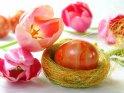 Osterfoto mit Tulpen und Eiern