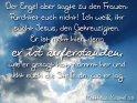 Der Engel aber sagte zu den Frauen:  Fürchtet euch nicht! Ich weiß,  ihr sucht Jesus, den Gekreuzigten.  Er ist nicht hier, denn  er ist auferstanden