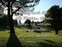 Selig sind die, die Frieden stiften,  denn sie werden Söhne Gottes genannt werden.  (Matthäus 5,9)