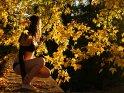 Erotisches Bild einer Frau in Dessous, umgeben von farbenfrohem Herbstlaub