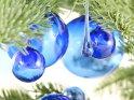 Blauer Weihnachtsschmuck aus Glas h�ngt an Tannenzweigen vor einem wei�en Hintergrund.