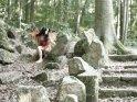 Teufelsfee im Wald zwischen Felsen