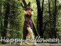 Happy Halloween    Dieses Motiv findet sich seit dem 31. Oktober 2017 in der Kategorie Halloweenkarten.