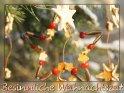 Besinnliche Weihnachtszeit    Dieses Kartenmotiv wurde am 19. Dezember 2009 neu in die Kategorie Religiöse Weihnachtskarten aufgenommen.