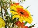 Detailaufnahme einer Gerbera, die sich in einem Blumenstrauß befindet.