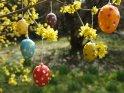 Foto von Ostereiern an einem frühlingshaften Osterstrauch