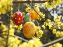 Künstlerische Ostereier an einem Frühlingsbusch