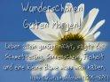 Wunderschönen Guten Morgen!  Leben allein genügt nicht, sagte der  Schmetterling,  Sonnenschein, Freiheit  und eine kleine Blume muss man haben.  Hans Christian Andersen (1805-1875)