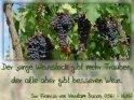 Der junge Weinstock gibt mehr Trauben,  der alte aber gibt besseren Wein.  Sir Francis von Verulam Bacon (1561 - 1626)