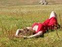 Eine Frau im roten Kleid liegt auf einer Blumenwiese