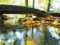 Kleiner herbstlicher Bach mit einer Steinbrücke