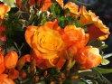 In orange gehaltener Blumenstrauß. Im Mittelpunkt des Bildes steht eine orange Rose.