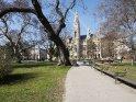 Blick über den Park auf das Rathaus