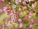 Herzliche Grüße zu Ostern!    Aus der Kategorie Osterkarten