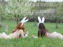 Du glaubst doch nicht ernsthaft,  dass wir die Eier jetzt verstecken!
